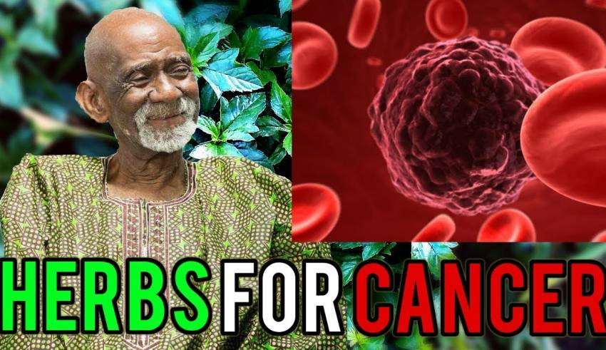 Dr Sebi Reveals Herbal Remedy For Cancer - HealingPlus
