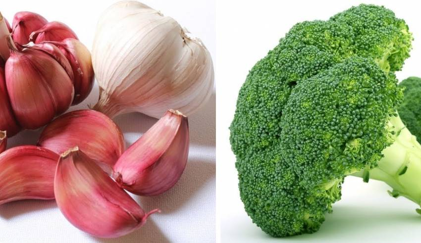 7 Super food that reduce risk of breast cancer - HealingPlus